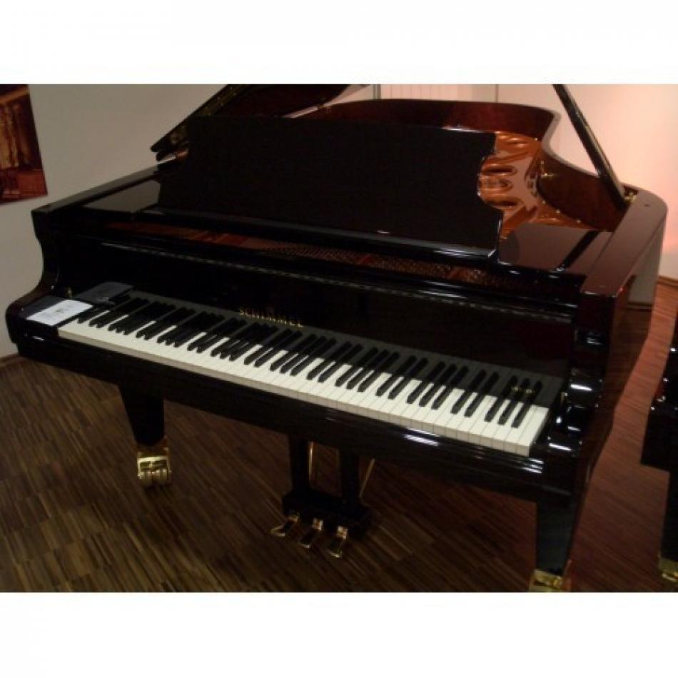 fl gel schimmel k230 kaufen testsieger der halbkonzertfl gel pianova. Black Bedroom Furniture Sets. Home Design Ideas