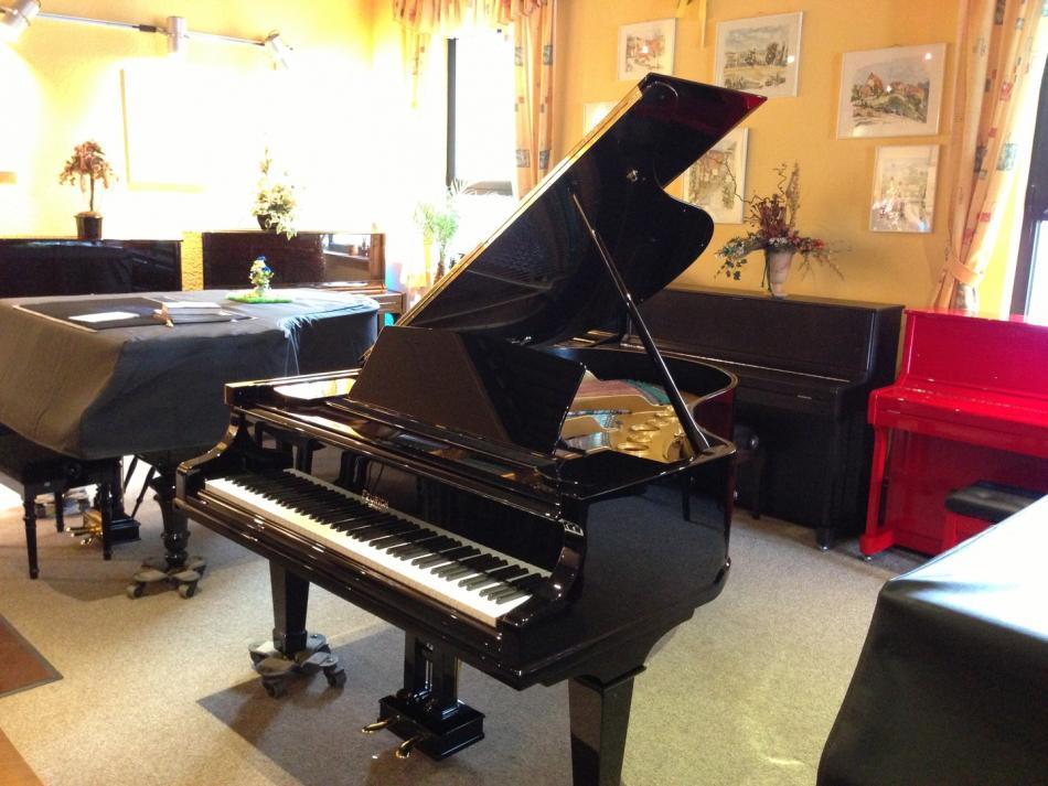 Fl 252 Gel Feurich Kaufen Feurich Fl 252 Gel Modell 190 Komplett Restauriert Pianova