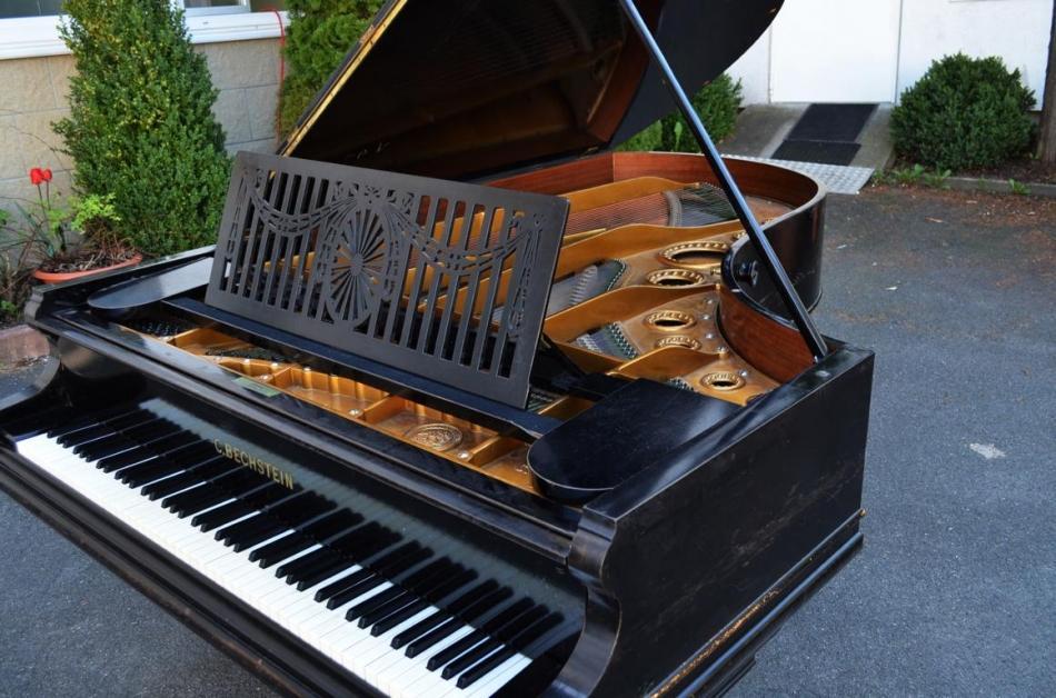 fl gel bechstein c234 kaufen c bechstein konzertfl gel modell c 234 cm pianova. Black Bedroom Furniture Sets. Home Design Ideas