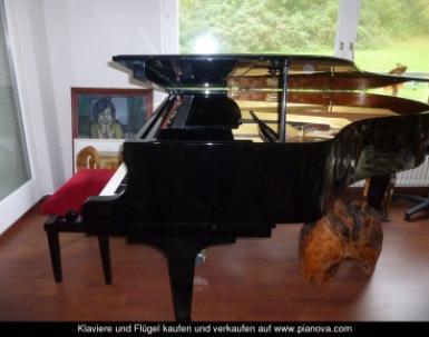 fl gel kawai kaufen k kawai fl gel klavier gebraucht. Black Bedroom Furniture Sets. Home Design Ideas